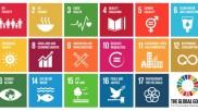 UN's new goals: realistic or idealistic?