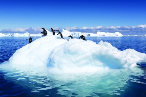 COP21: combating global warming